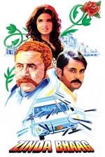 Zinda Bhaag (2013) afişi