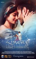 Zindagi Kitni Haseen Hay (2016) afişi
