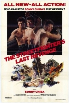The Street Fighter: Last Revenge
