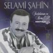 Selami Şahin