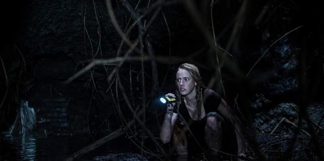 """Gerilim Filmi """"Crawl""""dan Yeni Bir Afiş Paylaşıldı"""