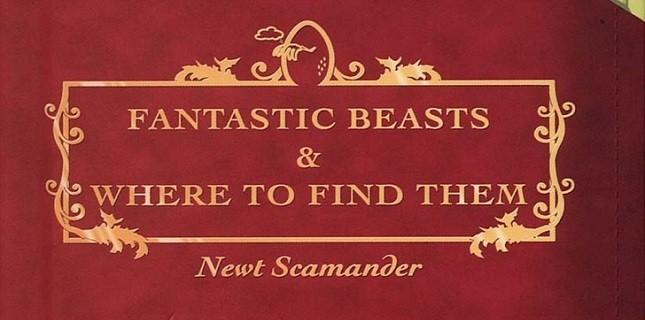 Harry Potter'dan Bir Film Daha
