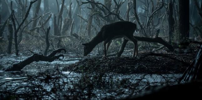 Netflix Dizisi The Witcher'dan Yeni Görseller