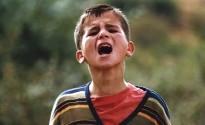 Kürt Sineması ve Kürtlerle İlgili Filmler