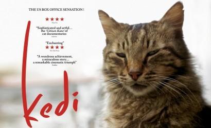 Dünya Kediler Günü'ne Özel Kedilerin Başrolde Olduğu En İyi Filmler