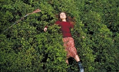 2000'lerde Türk Sinemasına Damga Vurmuş Ödüllü Türk Filmleri