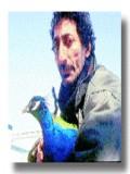 Barış Celioğlu profil resmi