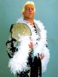 Ric Flair profil resmi