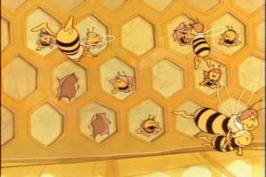 Arı Maya Resimleri