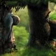 Sihirli Orman Resimleri