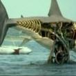 Jaws Resimleri 32
