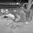 Jaws Resimleri 40