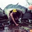 Jaws Resimleri 42