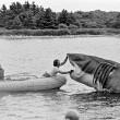 Jaws Resimleri 44