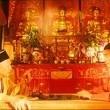 Sex And Zen Resimleri