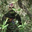 Astro Zombies Resimleri