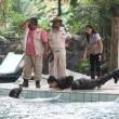 Hayvanat Bahçesi Resimleri