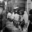 Cezayir Bağımsızlık Savaşı Resimleri 10