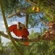 Robinson Crusoe Resimleri 15