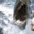 Jaws 2 Resimleri
