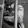 Brown Bag Diaries: Ridin' The Blinds In B Minor Resimleri