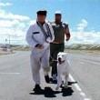 Bombon Köpek Resimleri