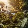 Dünya: Yeni Bir Başlangıç Resimleri