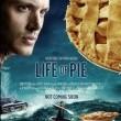 Pi'nin Yaşamı Resimleri 33