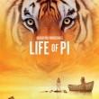 Pi'nin Yaşamı Resimleri 5