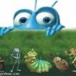 Bir Böceğin Yaşamı Resimleri