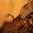 Dinozor Resimleri