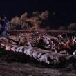 Çanakkale: Yolun Sonu Resimleri 13
