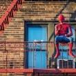 Örümcek-Adam: Eve Dönüş Resimleri 16