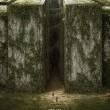 Labirent: Ölümcül Kaçış Resimleri 17