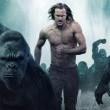 Tarzan Efsanesi Resimleri 66