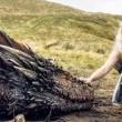Game of Thrones Sezon 5 Resimleri 32