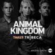 Animal Kingdom 1 Resimleri