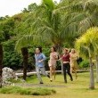 Hayal Adası Resimleri 3