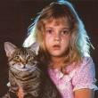 Kedi Gözü Resimleri