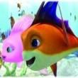Cesur Balık Resimleri 9
