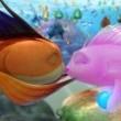 Cesur Balık Resimleri 0
