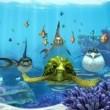 Cesur Balık Resimleri 3