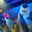 Köpekbalığı Hikayesi Resimleri 13