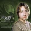 Angel Resimleri 16