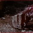 Tayopa'nın Hazinesi Resimleri 1