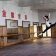 Mao'nun Son Dansçısı Resimleri 7