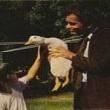 The Million Dollar Duck Resimleri