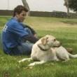 Köpek Severler Senfonisi Resimleri 0