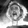 Genç Frankenstein Resimleri 6