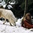 Survivre Avec Les Loups Resimleri
